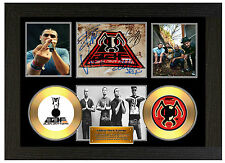 ALIEN ANT FARM - A3 SIGNED FRAMED GOLD VINYL COLLECTORS CD DISPLAY PICTURE