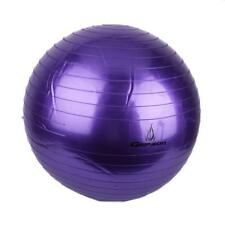 65cm Pilates Excercise Yoga Body Balance Ball Purple + Air Pump #C213