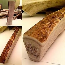 Large Double Split Elk Antler Dog Chew-Free Shipping! Your Dog Will Love It!!