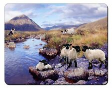 Border Collie on Sheep Watch Computer Mouse Mat Christmas Gift Idea, AS-24M