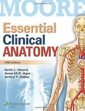 Essential Clinical Anatomy by Dr. Keith L. Moore MSc PhD FIAC FRSM FAAA, (Paperb