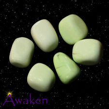 *ONE* LEMON CITRON CHRYSOPRASE Natural Tumbled Stone Approx 15-20mm *TRUSTED SEL