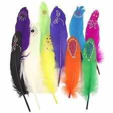 Diamante Studded Long Feathers Premium Coloured Craft Accessories Cards