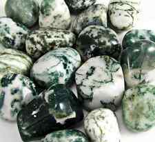 Tree Agate Tumbled Stone Lot - Healing Crystal Reiki Wicca