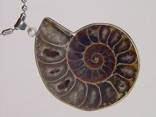 BUTW- Silver Ammonite nautiloid fossil  55 mm pendant necklace jewelry 6185K