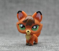 Littlest Pet Shop #807 LPS Animals Toy Brown Orange Fox Starburst Eyes Loose