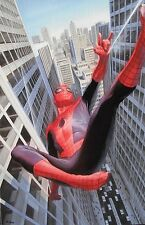 ALEX ROSS rare SPIDER-MAN:LEARNING TO CRAWL Mini Canvas NEW giclee with COA