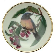 Songbirds of the World Rufous Bellied Niltava Miniature bird plate CP2457