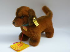 STEIFF original vintage ALL LABELS Hexie 4142/12 dachshund bassotto Dackel