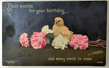 1906 Real Photo Postcard ~ Birthday Wishes ~Yellow Chick/Pink & White Carnations