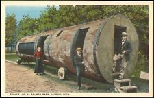 DETROIT MICHIGAN USA CARTE POSTALE SPRUCE LOG AT PALMER PARK
