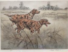 Limited Edition Engraving Picture Of Gun Dogs Irish Setters By Henry Wilkinson