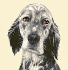 ENGLISH SETTER dog, complete counted cross stitch kit