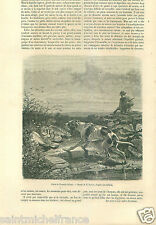 Hunting Tableau Hunting Chasse Chien Chouette Dog Owl Gun GRAVURE OLD PRINT 1862