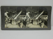 Keystone Stereoview #T210 Beet Pulp and Juice Production Montreal, Canada 20944
