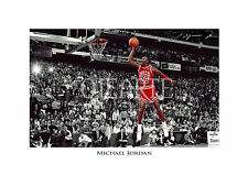 ✯ feedback ✯ Photo, Picture, Foto, Wallpaper, Photography, 照片, (MICHAEL JORDAN)