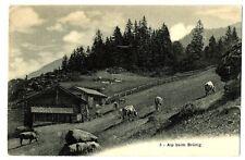 CPA Suisse Centrale Alp beim Brünig