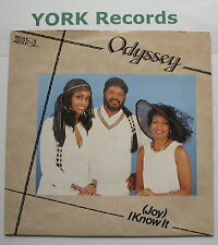 "ODYSSEY - (Joy) I Know It - Excellent Condition 7"" Mirror BUTCH 1"