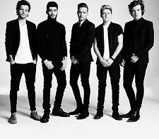 "One Direction Poster Singer Hot Art Silk Posters Prints 14x16"" BILLB111"