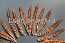 Natural Golden Pheasant feathers small loose bulk striped craft wedding feather