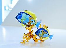 Swarovski Doctorfish Couple Tropicla Ocean Fish Dory 5223194 Brand New In Box
