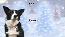 Border Collie Christmas Labels By Starprint - No 4