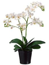"20"" Artificial Phalaenopsis Orchid Arrangement in Ceramic Pot Silk Flower DECOR"
