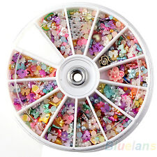 500x Wheel Mixed Nail Art Tips Glitters Crystal Slice Manicure Expressivity Nift