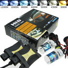 HID Xenon Headlight Conversion KIT 55W H1/H3/H4/H7/H11/9005/9006/880/881/9004/7