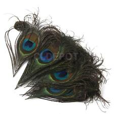10 Peacock Feathers 10-12cm Fascinator Hat Clothing Costume Craft DIY Supply