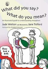 What Did You Say?  What Do You Mean?: An Illustrated Guide to Understanding Meta