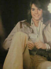 Shaun Cassidy, Double Full Page Vintage Pinup