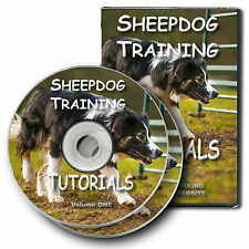 NEW - SHEEPDOG TRAINING TUTORIALS volume 1 - farming herding dog training DVD
