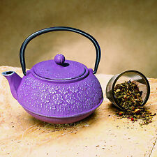 Cast Iron Teapot Tea Pot Serving Infuser Herbal Green Kettle Japanese Porcelain