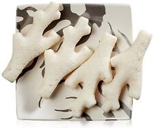Gianna Rose Atelier  4 Coral Soaps with Soap Dish