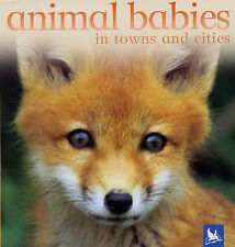Animal Babies in Towns and Cities, , New Book