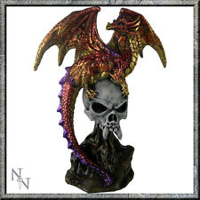 "FABULOUS GOTHIC FANTASY DRAGON FIGURINE ""PROTECTED"" STATUE FIGURE NEW & BOXED"