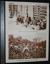 PHOTO 1930 COLONIES FRANCE INDOCHINE TONKIN LAO-KAY TABAC CANNE SUCRE VERS SOIE