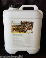 Plant Doctor Seaweed Secrets - Concentrated Liquid Seaweed Fertiliser 20Litres