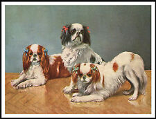 King Charles English Toy Spaniel Three Little Dogs Lovely Dog Print Poster