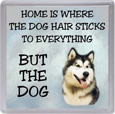 "Alaskan Malamute Coaster ""Home is Where the Dog Hair Sticks ..."" by Starprint"
