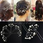 6pcs Wedding Party Bridal Prom White Pearl Flower Hair Clip Pin Jewellry Beauty