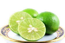 Thai Tropical Key Lime 15 Seeds Citrus Aurantifolia Fresh From Thailand.