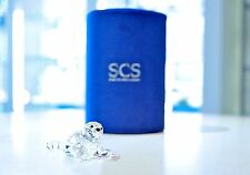Swarovski 2012 SCS Annual Edition Event Piece Baby Seal 1096748 Brand New In Box