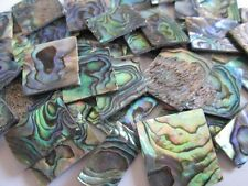 "1 oz GREEN PAUA ABALONE INLAY SHELL BLANKS, 0.060"" THICKNESS.Premium Pieces"