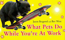 What Pets Do While You're at Work, West, Bev, Bergund, Jason - Paperback Book