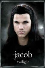 Twilight : Jacob - Maxi Poster 61cm x 91.5cm (new & sealed)