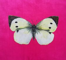 TEX EX ORIGINAL BUTTERFLY CABBAGE WHITE VELVET CUSHION PANEL SHERBET PINK