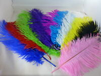 """QUALITY OSTRICH FEATHERS APPROX 10""""-12"""" (25-30cms) LONG COLOURED ARTS CRAFTS"""
