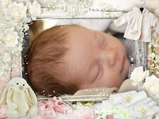Reborn Baby Sweet Dreams Ebay Auction Template Listing
